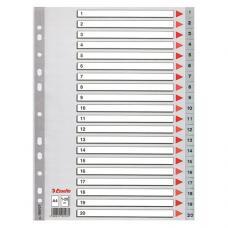 Esselte Seperatör A4 1-20 Rakam 100107
